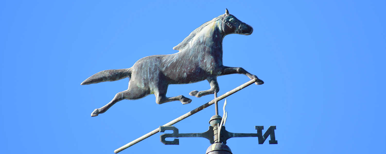 Ballavartyn Equestrian Centre Banner