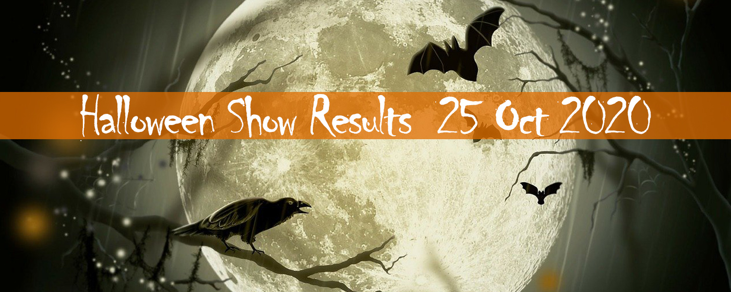 Ballavartyn Halloween Fun Show Results 25 October 2020