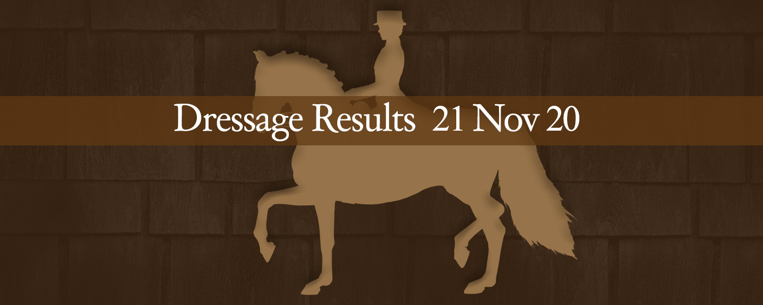Ballavartyn Dressage Results 21 November 2020
